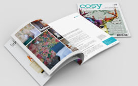 edition, direction artistique, cornelia van der Putten, mise en page, graphiste, freelance, freelence Paris, création, magazine